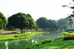 Public park at Suanluang Rama 9. Asia Thailand Flower and tree gardens of various colors and varieties. Beautiful public parkland Suan Luang R.9 in Bangkok stock photo