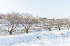 Public park with white snow. White snow against clear sky at public park ,Saitama,Japan Stock Photos