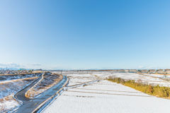 Public park with white snow Stock Photos