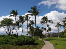 Public Pathway Along the Coast of Kaanapali Stock Images