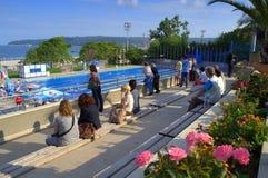 Public pool spectators Stock Images