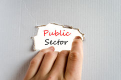 Public sector text concept. Isolated over white background Stock Image
