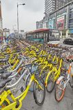 Public shared bicycles parking in downtown Chengdu. Royalty Free Stock Images