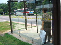 Public transit. Patient elderly woman waits in a bus shelter Stock Photography