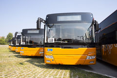 Public transportation new buses front Royalty Free Stock Photo