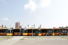Public transportation new busses front Stock Image