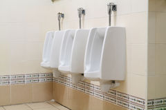 Public urinals Stock Images