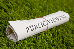 Public viewing newspaper Stock Photography