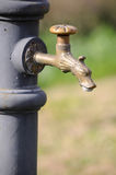 Public water fountain Stock Images