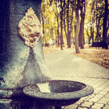 Public Water Fountain in park  in the form of Lion head Royalty Free Stock Photography