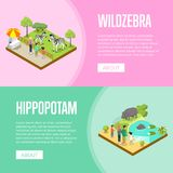 Public zoo isometric 3D posters set. Public zoo with wild animals and visitors isometric posters. People near cages with zebras and hippopotamus vector Royalty Free Stock Images