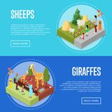 Public zoo isometric 3D posters set. Public zoo with wild animals and visitors isometric 3D posters set. People near sheeps and giraffes in cages. Zoo Royalty Free Stock Photos