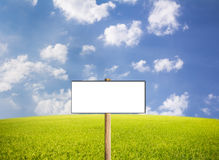 Published advertising and rice on a blue background. Banner to fill the sky. Used with any text Royalty Free Stock Image