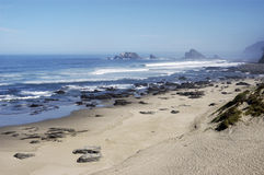 Pucatrihue Beach, coast of Osorno, Chile Royalty Free Stock Images
