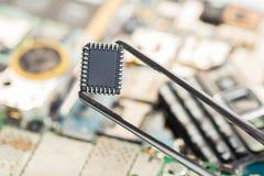 Puce électronique dans des brucelles photo stock