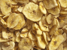 Puces de banane image stock