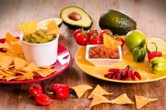 Puces de guacamole et de nacho images libres de droits