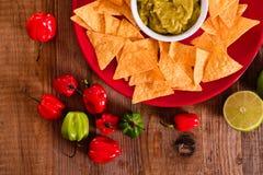 Puces de guacamole et de nacho photographie stock