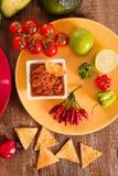 Puces de guacamole et de nacho image stock