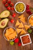 Puces de guacamole et de nacho image libre de droits