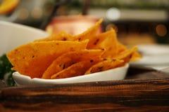 Puces de Nachos avec le Salsa et le guacamole de tomate photos stock