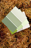 Puces de peinture de couleur sur un fond de mousse Images libres de droits