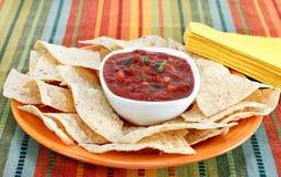 Puces de Salsa et de tortilla photographie stock