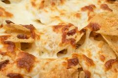 Puces de tortilla photo libre de droits