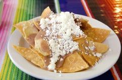 Puces de tortilla image stock