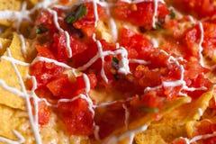Puces et haut étroit de Salsa image stock