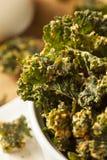 Puces vertes faites maison de chou frisé Photo stock