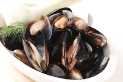 pucharów mussels Zdjęcia Stock
