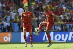 Puchar Świata 2014 obraz royalty free
