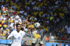 Puchar Świata 2014 obraz stock