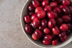 Puchar świezi dojrzali cranberries zdjęcie stock