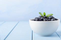 Puchar czarne jagody na błękicie Obraz Royalty Free