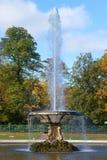 Puchar fontanny zakończenie up w pogodnym Października popołudniu w pałac parku Peterhof Obraz Stock