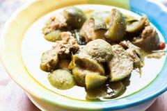 Puchar korzenny zielony curry z kurczakiem i oberżyną Fotografia Royalty Free