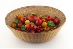 Puchar pomidory w wiele kolorach zdjęcie royalty free