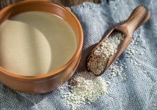 Puchar tahini z sezamowymi ziarnami Fotografia Stock