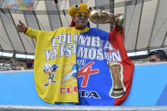 Puchar Świata 2014 fotografia royalty free
