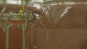 Puchar z czerwonym kawiorem zbiory wideo
