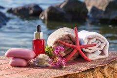 Puchar z morze solą, butelki z aromatycznym olejem, mydło, dziki kwiat fotografia stock