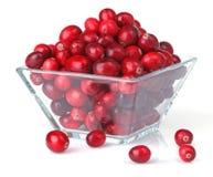 pucharu cranberries świeży szkła kwadrat Obrazy Stock