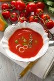 pucharu gazpacho Zdjęcie Royalty Free
