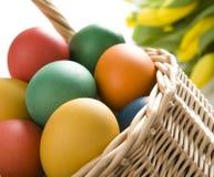 pucharu kolorowi Easter jajka drewniani Obraz Stock