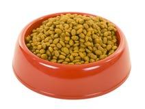 pucharu kota suchy jedzenie zdjęcie stock