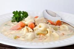 pucharu kurczaka świeżo przygotowany zupny tortelinni zdjęcia stock