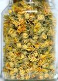 pucharu kwiatów szklanego linden stołu herbaciany tilia drewniany Fotografia Royalty Free