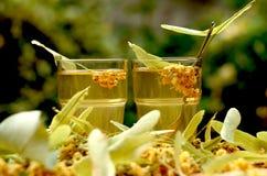 pucharu kwiatów szklanego linden stołu herbaciany tilia drewniany Obraz Stock